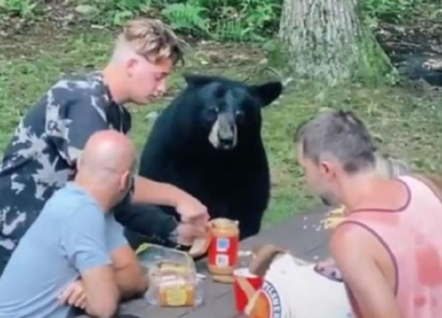 Kad vam se na pikniku pridruži medo! (VIDEO)