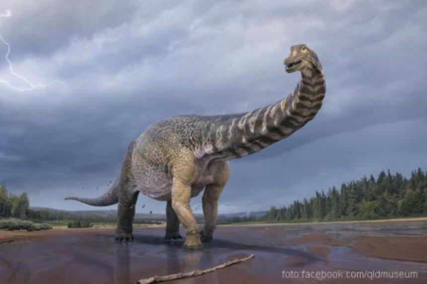 U Australiji otkriven dinosaurus veliki kao košarkaški teren!